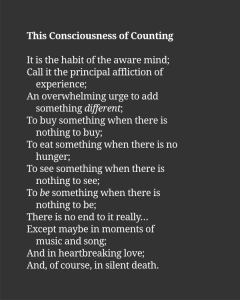 This Consciousness of Counting